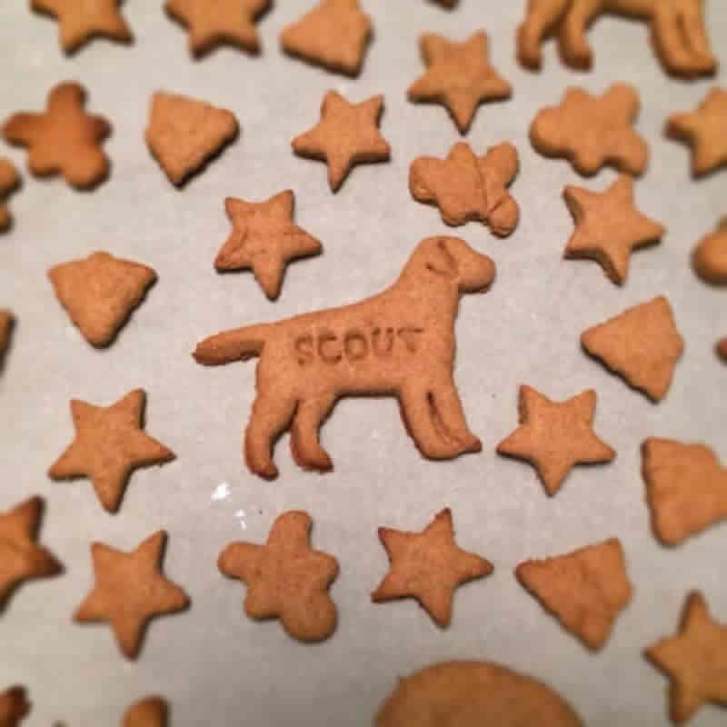 Homemade Dog Treats Peanut Butter Recipe by CookieRookie.