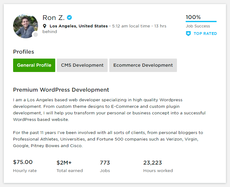 Ron Zvagelsky –Premium WordPress Development Upwork_Freelancer from Los Angeles United States