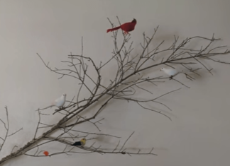DIY Home Decoration - Free Road Side Tree Branch